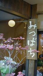 Mitubachi