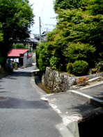 Manyama